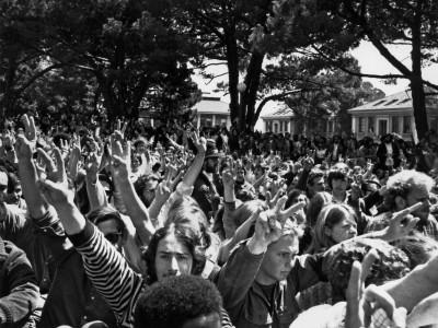 Proteste im People's Park Berkeley: Schaut auf diesen Park