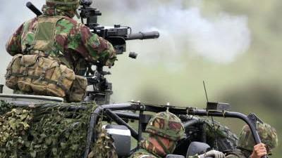 Deutsche Waffen in Georgien