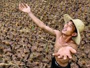 Problem Bewässerung, dpa