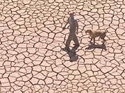 Dürre, AP