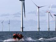 Windpark Nordsee, Foto: AP