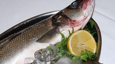 """Restaurants Fischrestaurant Schlachthofviertel """"Italfisch"""""""