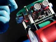 Roboter mit Rattenneuronen, AFP