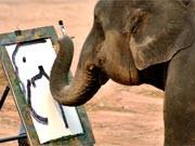 das leben der anderen elefant selbstporträt