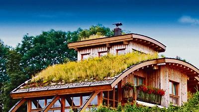 Bepflanzte Dächer