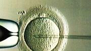 Keimzellen