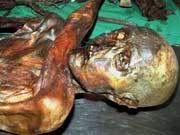 Ötzi Computertomographie Todesursache Eismann Steinzeitmord