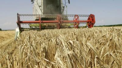 Aufschrei nach EU-Agrarkompromiss