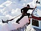 Robbenjagd in Kanada (Bild)