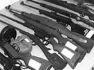 Polizei hebt Waffenkeller in Braunschweig aus (Bild)