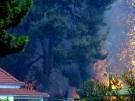 Feuer-Notstand in Südeuropa (Bild)