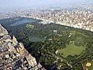 Ekstatisches Balzen im Central Park (Bild)