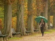 Herbst, ap
