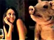 das leben der anderen schweine porks cochon