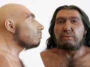 Neandertaler, dpa