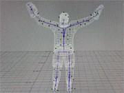3-D-Darstellung eines Menschen