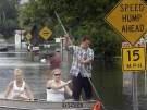 Flut lockt Alligatoren aus den Sümpfen (Bild)