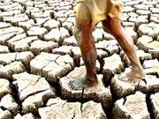 Klimakatastrophe ist Wort des Jahres 2007