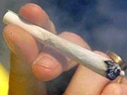 Cannabis, Joints schädlicher als Zigaretten