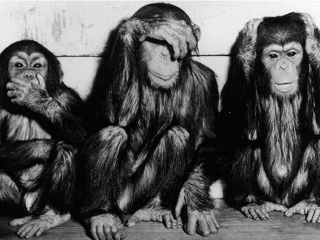 Die Besten Trios Die Drei Affen Nichts Hören Heilige