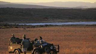 Südafrika Zederberge San Rooibos-Tee, Bushmans Kloof