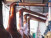 brennblasen für whisky ; A. Schätzl