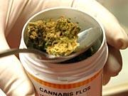 Cannabis; Foto: dpa