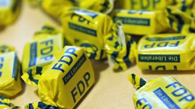 FDP Parteienfinanzierung