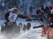Iditarod Trail Sled Dog Race;Reuters
