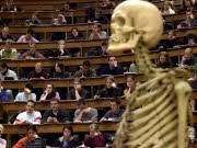 Bologna-Reform Bachelor Master Universitäten Bildungsstreik, ddp
