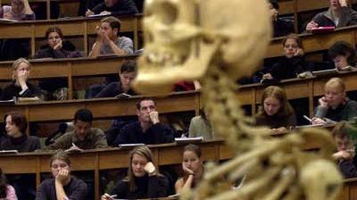 Studium Kritik an der Bologna-Reform