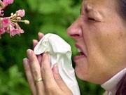 Pollenallergie, dpa