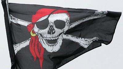 Piratenpartei Piratenpartei
