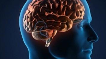 Halluzinationen Halluzinationen bei der Körperwahrnehmung