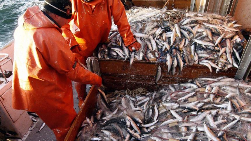 Ministerium kuendigt Entlastungen fuer Heringsfischer an