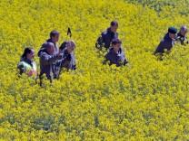 Polizei sucht nach Leichenfund wieder nach Spuren