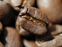 Kaffeeroester muessen erneut Strafe wegen Preisabsprachen zahlen