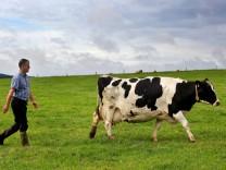 Milchbauer in der Eifel
