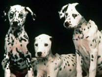 US-Regisseur John Hughes mit 59 gestorben - '101 Dalmatiner'