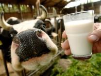 'Tag der Milch'