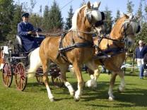 Unterbrunn Pferdekutschenturnier