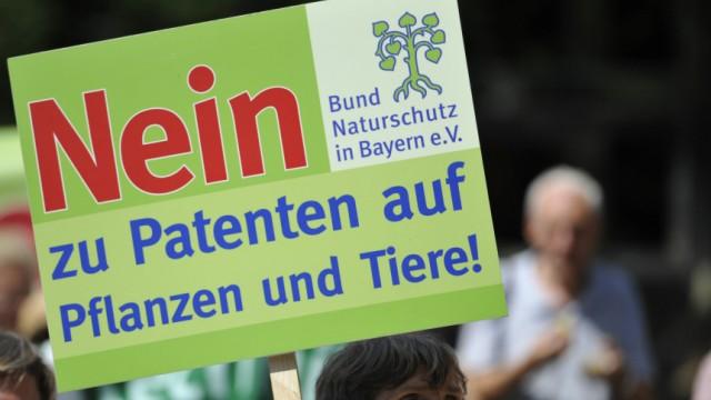 'Brokkoli-Patent' steht auf dem Prüfstand