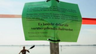 Badeverbot wegen Blaualgen am Dümmer See