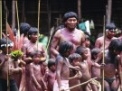 Davi Kopenawa Yanomami Schamane Davi Kopenawa Yanomami Schamane