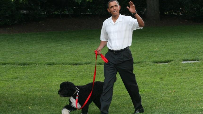 US-Präsident Obama führt seinen Hund Bo an der Leine