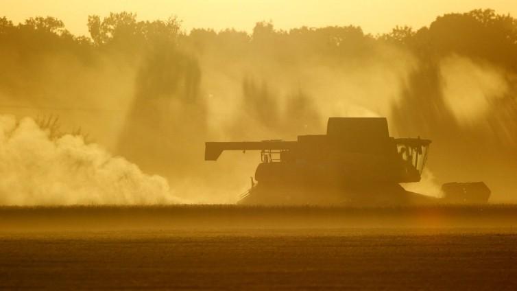 Getreideernte in Sachsen auf Hochtouren