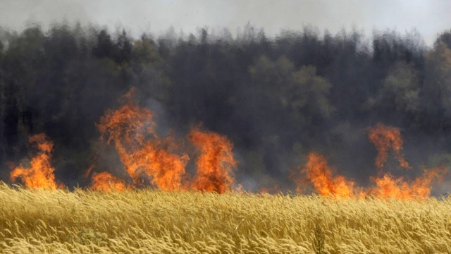 Russland Waldbrände in Russland