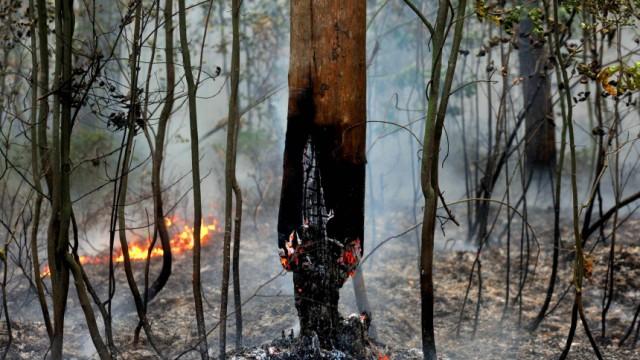 RUSSIA-HEATWAVE-FIRES