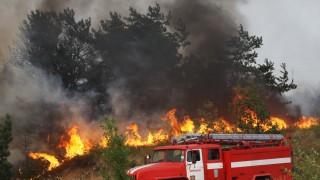 Verheerende Waldbrände in Russland wüten weiter