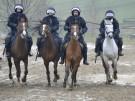 DEU_SN_Polizei_Pferde_Uebung_DRE104
